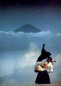 beladiri aikido